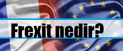 frexit, fransa ab'den ayrılma referandumu